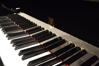 Image of Steinway Piano